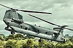 Chinook - RIAT 2016 (31796052261).jpg