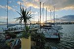 Circolo Nautico NIC Porto di Catania Sicilia Italy Italia - Creative Commons by gnuckx (5386831648).jpg