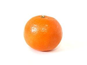 English: Mandarin orange (Citrus reticulata)