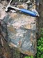 Clast-rich impact pseudotachylite (Sudbury Breccia, Paleoproterozoic, 1.85 Ga; Windy Lake Northwest roadcut, Sudbury Impact Structure, Ontario, Canada) 25 (47739547531).jpg