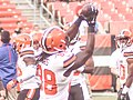 Cleveland Browns vs. Buffalo Bills (20154726814).jpg