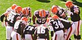 Cleveland Browns vs. Pittsburgh Steelers (15344215168).jpg