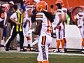 Cleveland Browns vs. Washington Redskins (20588672801).jpg