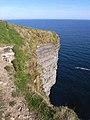 Cliffs at Ceide Fields - geograph.org.uk - 1881640.jpg