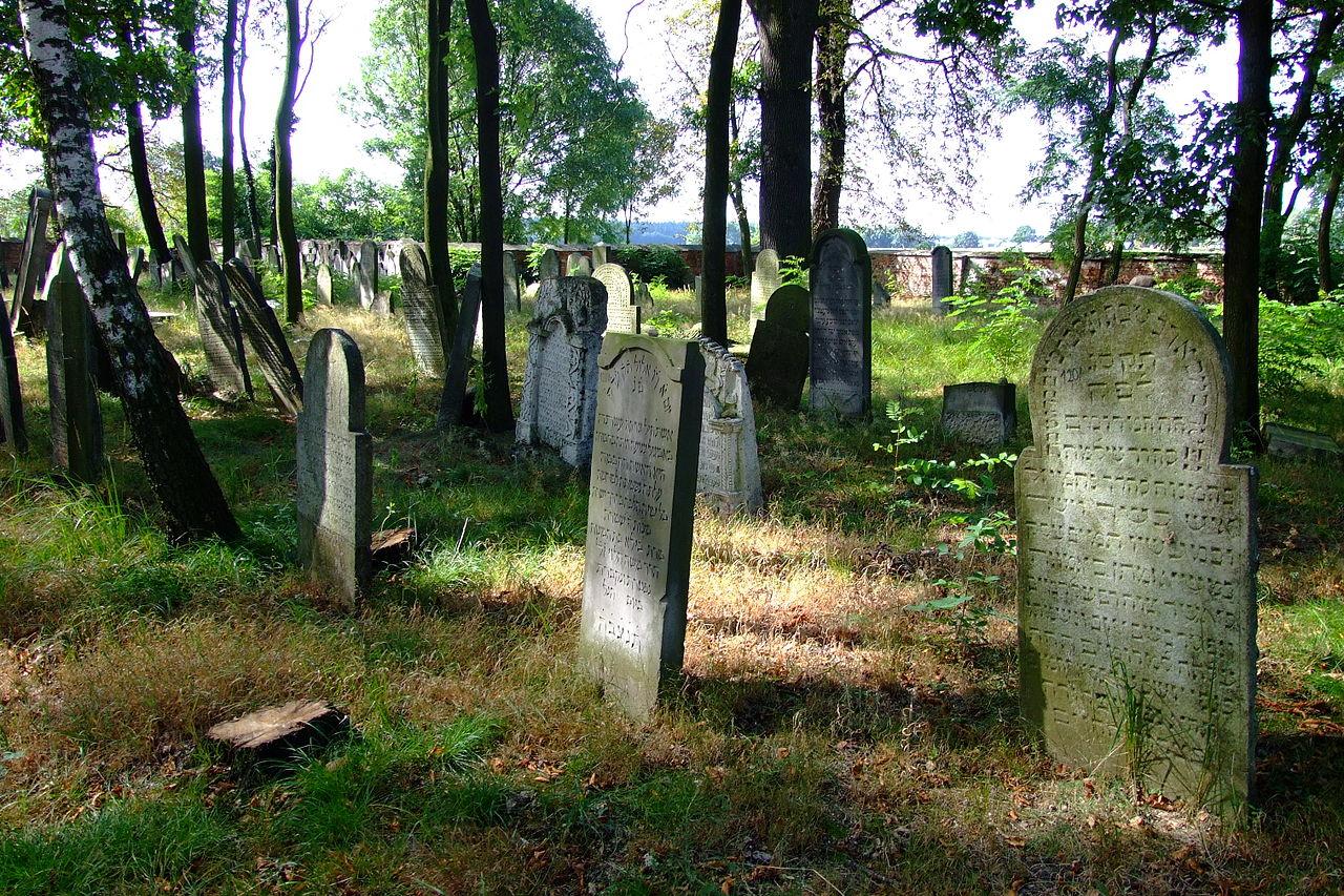 Cmentarz żydowski w Dobrodzieniu12.JPG