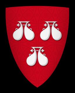 Robert de Ros (died 1227) English baron, died 1227