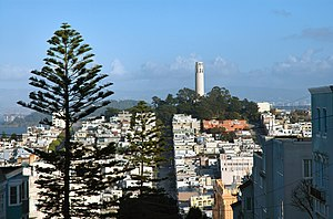 Telegraph Hill, San Francisco - Coit Tower on Telegraph Hill, as seen from Russian Hill