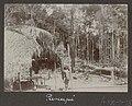 Collectie NMvWereldculturen, RV-A102-1-184, 'Panapi'. Foto- G.M. Versteeg, 1903-1904.jpg