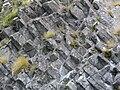 Columnar basalt, Otago Peninsula, NZ.JPG