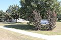 Cottonwood Community Center.jpg