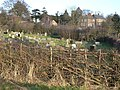 Croft Cemetery - geograph.org.uk - 1136396.jpg
