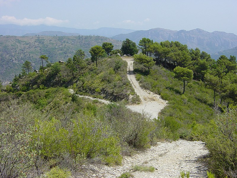 File:Crossroad at Gran Mondo - panoramio.jpg