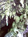 Cueva del Guacharo 2003 000.JPG