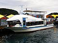 Curiseboat Kujira Go Shipped at Pier of Katsuura Port 20100212.jpg