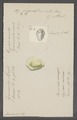 Cypraea moneta - - Print - Iconographia Zoologica - Special Collections University of Amsterdam - UBAINV0274 088 02 0071.tif