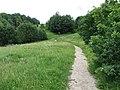 Dūkštų sen., Lithuania - panoramio (183).jpg