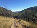 Davis Mountains Preserve 7.JPG