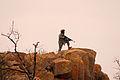 Defense.gov photo essay 110130-A-5446S-021.jpg