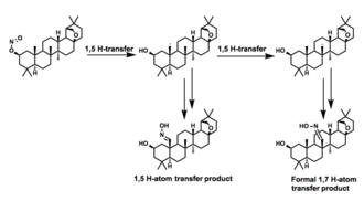 Barton reaction - A formal 1,7 Barton in the synthesis of allobetullin derivatives
