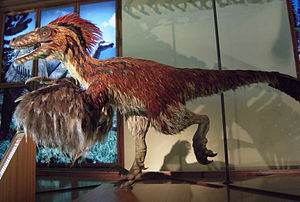 Lebendrekonstruktion von Deinonychus im Naturh...