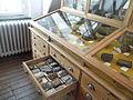 Delft Mineralogisch-Geologisch Museum 2015.JPG