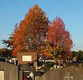 Dendermonde St-Gillis kerkhof 06.JPG