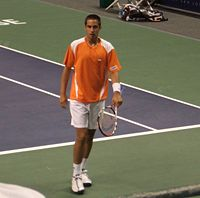 Denis-Gremelmayr-SAP-Open-San-Jose-2008.jpg
