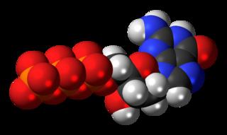 Deoxyguanosine triphosphate chemical compound