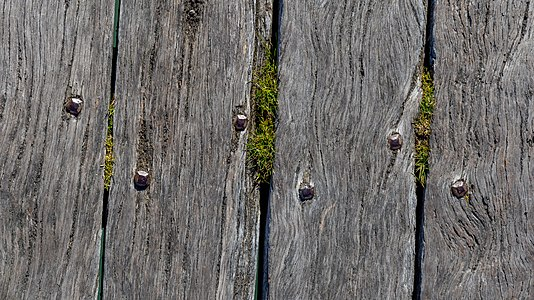 Detail of a pier in Akaroa, Canterbury, New Zealand