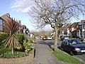 Dickins Road, Warwick - geograph.org.uk - 1205318.jpg