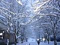 Dite Dimri ne Qytetin Kukes.jpg