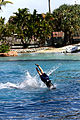 Dolphin Cove 24.jpg