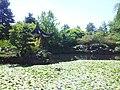 Dr Sun Yat-Sen Gardens - panoramio (1).jpg