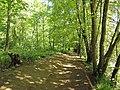 Dunkeld, The Hermitage, path, 01.jpg