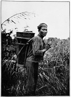 Dusun people - Image: Dusun Carrying Bongun