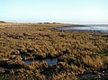 Easington Bank - geograph.org.uk - 305520.jpg