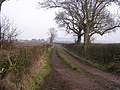 Edgarley Field Lane - geograph.org.uk - 1115565.jpg