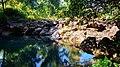 Ekosistem sumber air 2.jpg