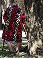 Elderly Woman with Crutches - Dnipropetrovsk - Ukraine (44154620941).jpg