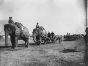 Elephant battery of heavy artillery along the Khyber Pass at Campbellpur LCCN2004707363
