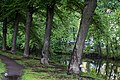 Embankment of river Smolenka - panoramio (1).jpg