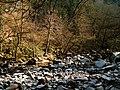 Empty River - panoramio.jpg