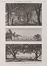Environs du Kaire (Cairo). 1. Vue de petit bras du Nil vis-à-vis de l'île de Roudah (el-Rôda); 2. Vue de l'Allée des Sycomores dans l'île de Roudah (el-Rôda); 3. Vue de Jardin de Mourâd Bey (NYPL b14212718-1268728).jpg