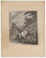 Equus asinus - 1700-1880 - Print - Iconographia Zoologica - Special Collections University of Amsterdam - UBA01 IZ21700113.tif