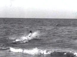Bestand:Er wordt in Zandvoort aan Zee nog gezwommen Weeknummer 46-52 - Open Beelden - 50599.ogv