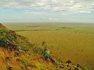 Santos Luzardo National Park - Image: Extensas llanuras de vegetación sabanera
