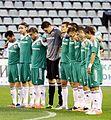 FC Vorskla Poltava 2013.jpg