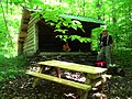 FLT M27 15.5 mi - Dry Brook Lean-To, 8.5'x12' interior, fire ring, new roof 2012, ADA accessible outhouse, picnic table, no nearby water - panoramio.jpg