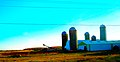 Farm with Five Silos - panoramio.jpg