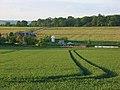 Farmland, Wilcot - geograph.org.uk - 842637.jpg